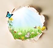 2 forsują pisklęca pojęcia Easter jajek kwiatów trawa malujących umieszczających potomstwa Zdjęcie Stock