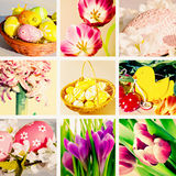 2 forsują pisklęca pojęcia Easter jajek kwiatów trawa malujących umieszczających potomstwa Obraz Royalty Free