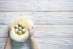2 forsują pisklęca pojęcia Easter jajek kwiatów trawa malujących umieszczających potomstwa Szczęśliwy śliczny dziecko jest ubrany Zdjęcia Stock