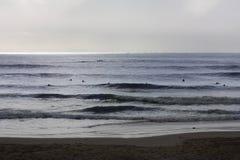 forsurfing совершенные волны Стоковое Изображение