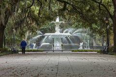 Forsythpark en fontein Royalty-vrije Stock Afbeeldingen