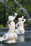 forsythspringbrunnpark Royaltyfria Foton