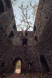 Fort überwältigt mit Niederlassungen Redi-Fort Yashwantgad-Fort Indien, Maharashtra Stockfoto