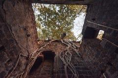 Fort überwältigt mit Niederlassungen Redi-Fort Yashwantgad-Fort Indien, Maharashtra Lizenzfreie Stockfotografie