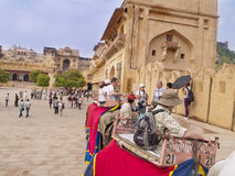 Fort Amber, India. Stock Photography