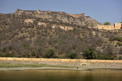 Fort Amber, India Royalty Free Stock Images