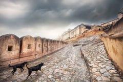 Fort ambre en Inde Photo libre de droits