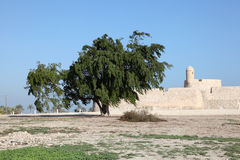 Fort of Bahrain in Manama, Middle East Stock Photo