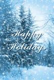 Forêt bleue bonnes fêtes Photographie stock libre de droits