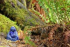 Forêt Bouddha Photo libre de droits