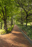 Fort Canning Hill Public Parks Royalty Free Stock Photography