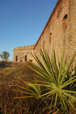 Fort Clinch, Florida. Partial view of wall of fortress with palmetto frond in foreground, Fort Clinch, national historic site on Fernandina Beach on Amelia stock image