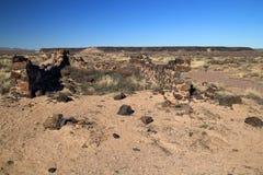 Fort Craig Ruins Royalty Free Stock Photo