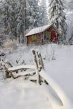 Forêt de l'hiver. Photographie stock libre de droits