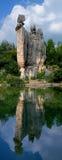Forêt de pierre de Chine Images libres de droits