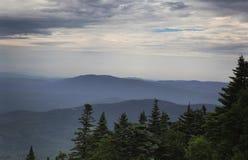 Forêt et montagnes Image libre de droits