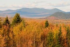 Forêt et montagnes d'automne Images libres de droits