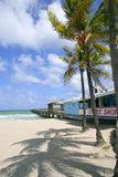 Fort Lauderdale beach cafe tropical Stock Images