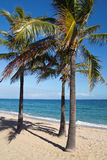 Fort Lauderdale Beach Stock Image