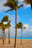 Fort Lauderdale beach sunrise Florida US Royalty Free Stock Photo