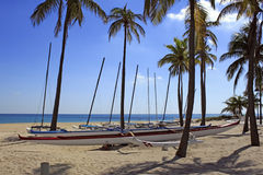 Outrigger Canoe Rentals Fort Lauderdale Beach. FORT LAUDERDALE, FLORIDA - NOVEMBER 1: About a dozen outrigger canoe boats available for renting to sail on the Stock Photo