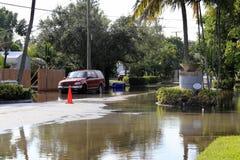 Översvämmade gator, Victoria parkerar, Fort Lauderdale Arkivfoton