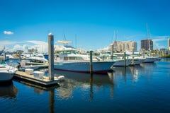 FORT LAUDERDALE, U.S.A. - 11 LUGLIO 2017: Una linea di barche visualizzate per la vendita alla manifestazione internazionale dell Fotografia Stock Libera da Diritti