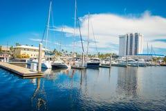 FORT LAUDERDALE USA - JULI 11, 2017: En linje av fartyg visade till salu på Fort Lauderdale Fotografering för Bildbyråer