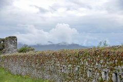 Fort Lesendro, Montenegro. The wall of the Lesendro fort on the Skadar Lake, Montenegro Royalty Free Stock Image