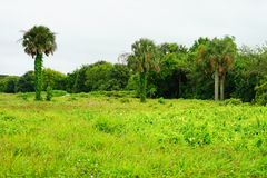 Fort Moultrie in Charleston, South Carolina Lizenzfreie Stockfotografie