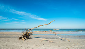 Fort Myers Beach. Pretty Fort Myers Beach on the west coast of Florida Stock Photography
