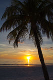 Fort Myers Beach, solnedgång Arkivfoto