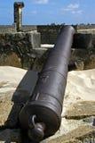 Fort-Orange, Kanone und Verteidigungswände, Brasilien Stockfotografie