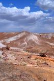 Forêt Petrified Photographie stock libre de droits