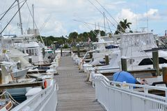 Fort Pierce Marina Royaltyfria Bilder