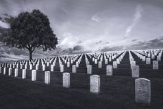Fort Rosecrans National Cemetery. royalty free stock image