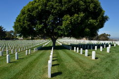 Fort Rosecrans National Cemetery Royalty Free Stock Photography