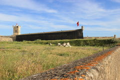 Fort S. Julião  Barra Royalty Free Stock Photography