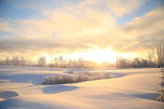 Fort Saint John Winter. The Icy Northern Winters in Fort Saint John Royalty Free Stock Photo