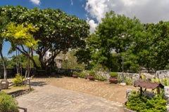 Fort-San- Pedroyard in Cebu-Stadt Lizenzfreies Stockfoto