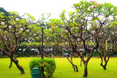 Fort Santiago Photographie stock