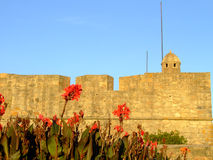 Fort of Sao Joao Baptista da Foz Stock Photography