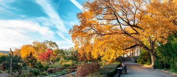 Fort Tryon Park, New York City. USA. New York, USA - November 4, 2018: Fort Tryon Park, is a public park located in the Hudson Heights and Inwood neighborhoods royalty free stock photography