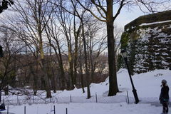 Fort Tryon Park Winter Royalty Free Stock Photography