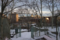 Fort Tryon Park Winter Royalty Free Stock Image