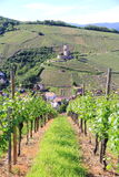 Fort of Wineck to Katzenthal. Picturesque fort in the middle of the Alsatian vineyard Stock Images
