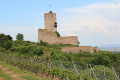 Fort of Wineck to Katzenthal. Picturesque fort in the middle of the Alsatian vineyard Royalty Free Stock Photos
