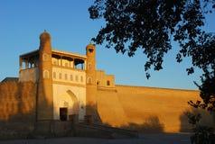 Fortaleza da arca em Bukhara no por do sol com folhas fotografia de stock royalty free