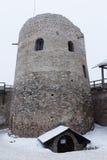 Fortaleza de Izborsk no inverno Imagem de Stock Royalty Free