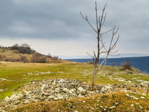 Fortaleza de Ovech, Provadia, Bulgária Imagens de Stock